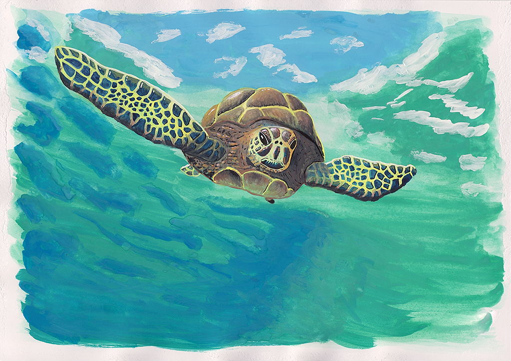 Turtle Diving. Awkward on land, but in water, these beautiful animals are as graceful as the best of them. Gouache on paper.